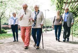 Benefícios e programas do governo para idosos
